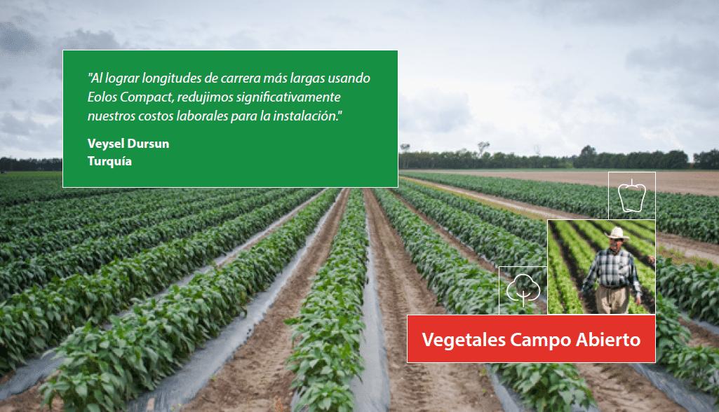 open field vegtables crop