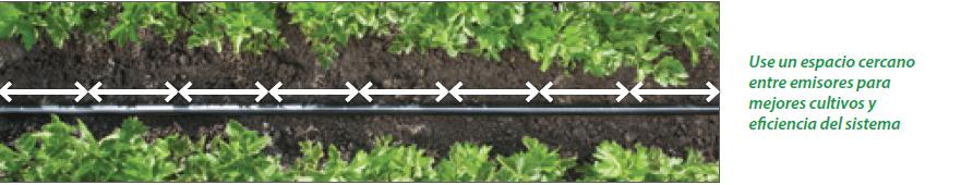 dripper system for open field crop